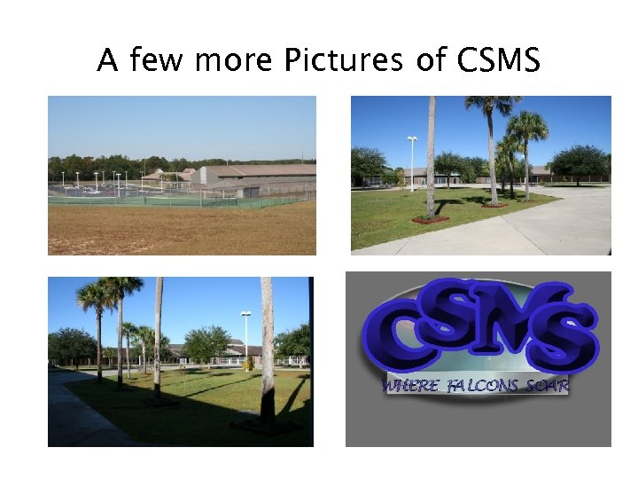 A few more Pictures of CSMS