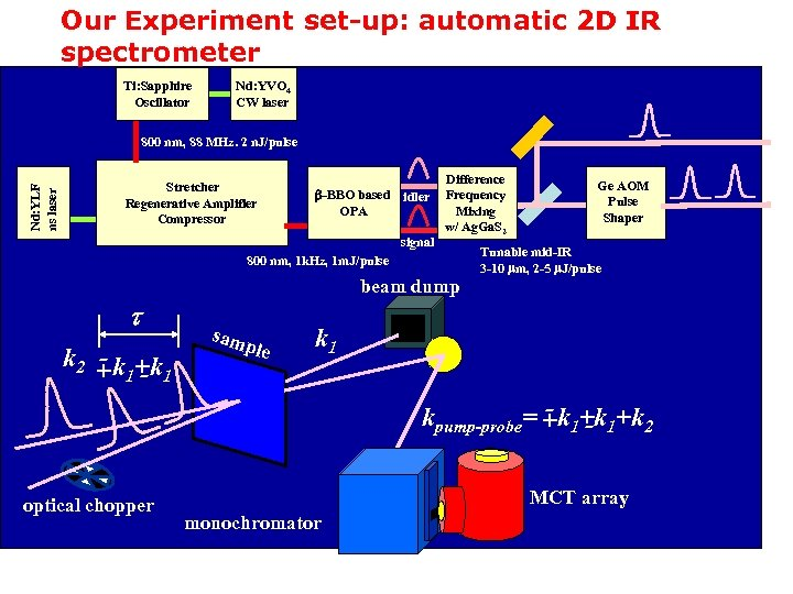 Our Experiment set-up: automatic 2 D IR spectrometer Ti: Sapphire Oscillator Nd: YVO 4