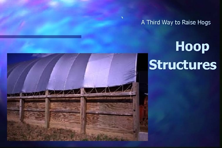 ` A Third Way to Raise Hogs Hoop Structures