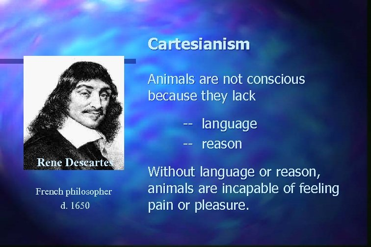 Cartesianism Animals are not conscious because they lack -- language -- reason Rene Descartes