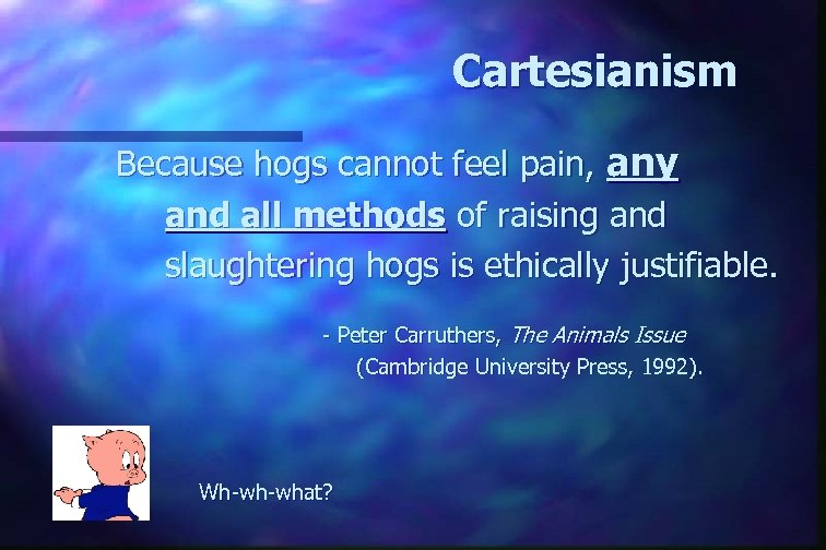 Cartesianism Because hogs cannot feel pain, any and all methods of raising and slaughtering