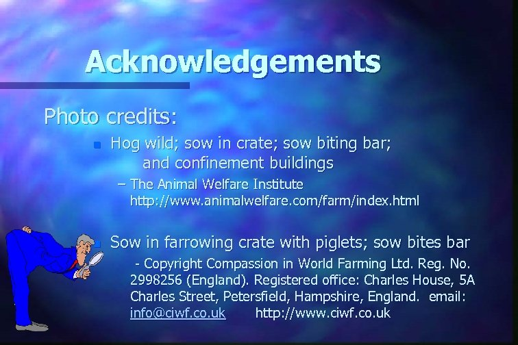 Acknowledgements Photo credits: n Hog wild; sow in crate; sow biting bar; and confinement