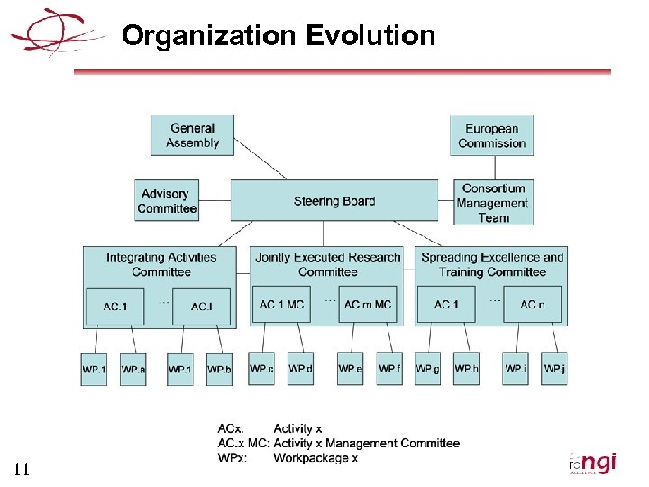 Organization Evolution 11