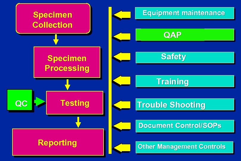 Specimen Collection Equipment maintenance QAP Specimen Processing Safety Training QC Testing Trouble Shooting Document