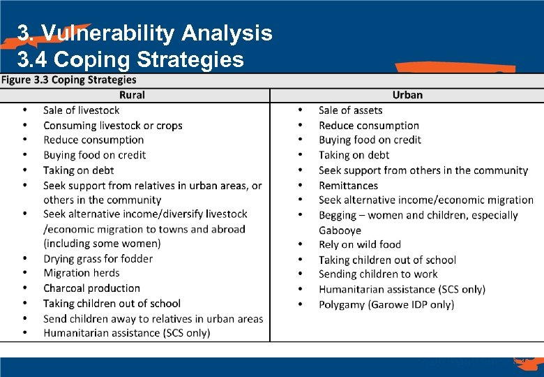 3. Vulnerability Analysis 3. 4 Coping Strategies 46
