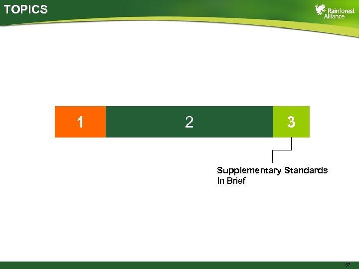 TOPICS 1 2 3 Supplementary Standards In Brief 87