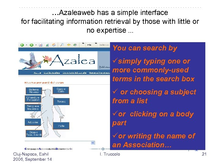 …Azaleaweb has a simple interface for facilitating information retrieval by those with little or