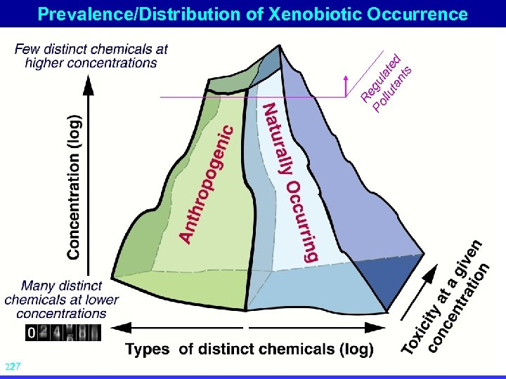 Re Po gu llu late ta d nt s Prevalence/Distribution of Xenobiotic Occurrence 27