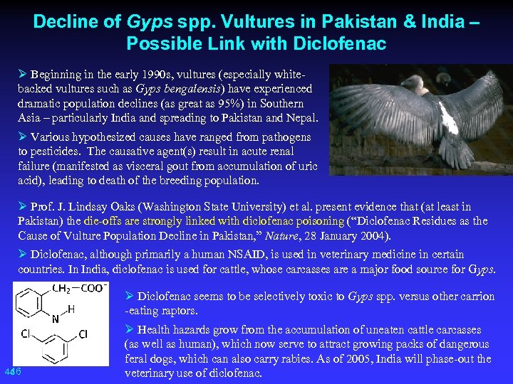 Decline of Gyps spp. Vultures in Pakistan & India – Possible Link with Diclofenac