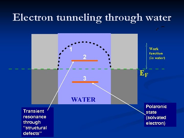 "Electron tunneling through water 1 2 3 Transient resonance through ""structural defects"" Polaronic state"