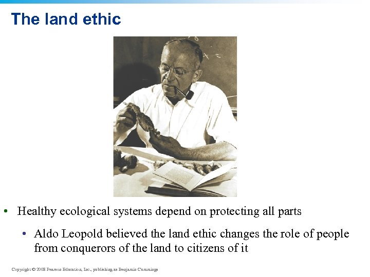 The land ethic • Healthy ecological systems depend on protecting all parts • Aldo