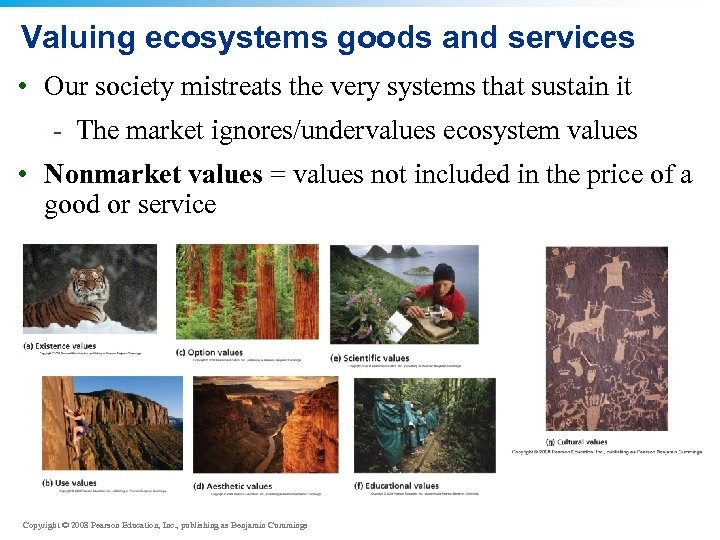 Valuing ecosystems goods and services • Our society mistreats the very systems that sustain