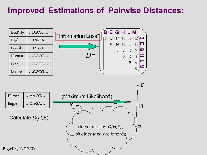 Improved Estimations of Pairwise Distances: …AAGT… Eagle …CAGA… Gorrila …CCGT… Human …AACG… Lion …AATA…