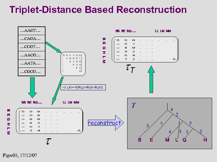 Triplet-Distance Based Reconstruction …AAGT… BB BE BG…. . B E G H L M