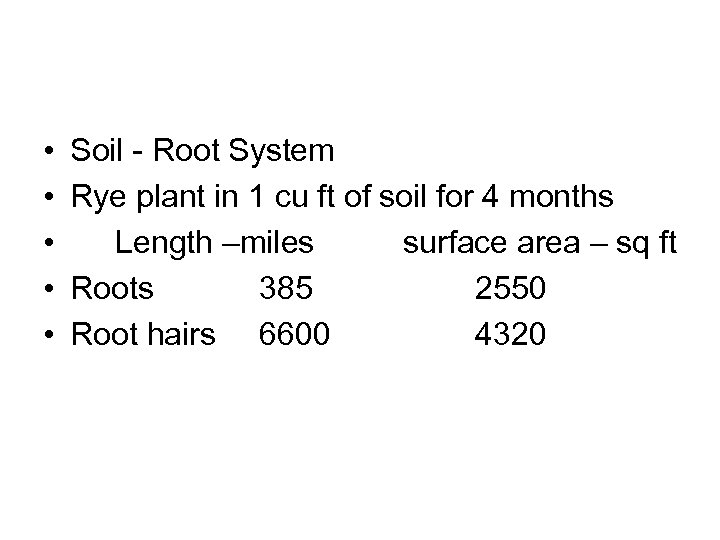 • • • Soil - Root System Rye plant in 1 cu ft
