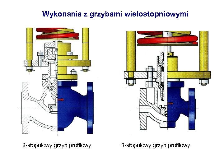 Wykonania z grzybami wielostopniowymi 2 -stopniowy grzyb profilowy 3 -stopniowy grzyb profilowy