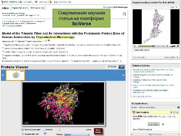 Современная научная статья на платформе Sci. Verse