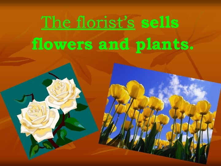 The florist's sells flowers and plants.
