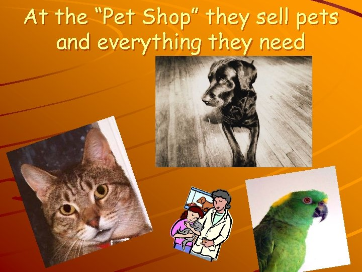 "At the ""Pet Shop"" they sell pets and everything they need"