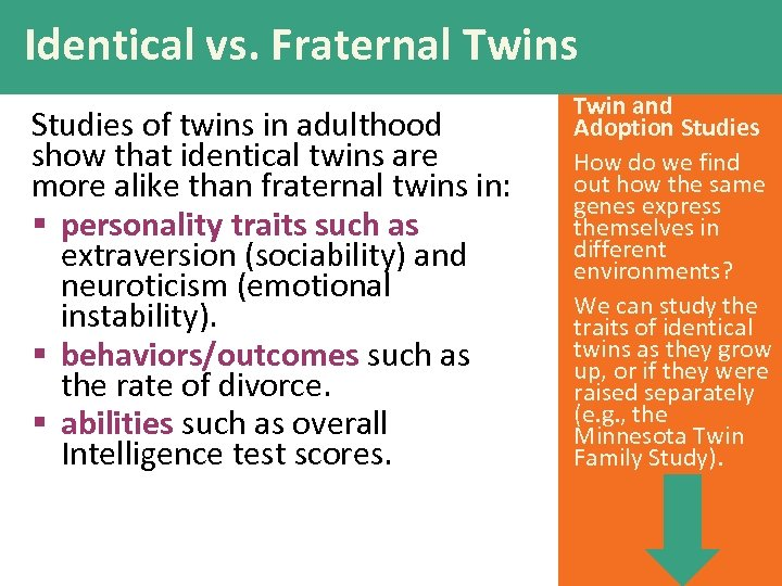 Identical vs. Fraternal Twins Studies of twins in adulthood show that identical twins are