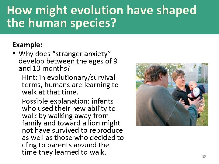 """How might evolution have shaped the human species? Example: § Why does """"stranger anxiety"""""""