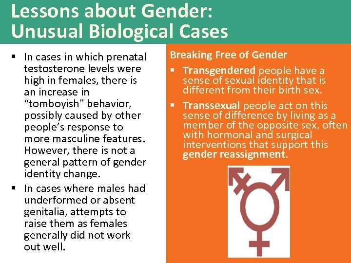 Lessons about Gender: Unusual Biological Cases § In cases in which prenatal testosterone levels