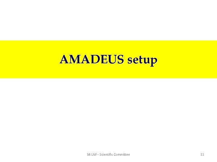 AMADEUS setup 38 LNF - Scientific Committee 11