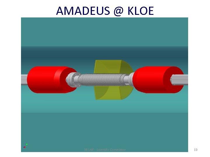AMADEUS @ KLOE 38 LNF - Scientific Committee 13