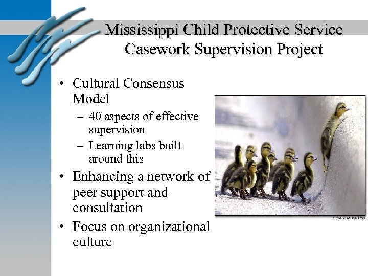Mississippi Child Protective Service Casework Supervision Project • Cultural Consensus Model – 40 aspects
