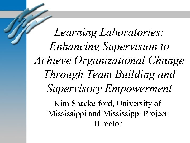 Learning Laboratories: Enhancing Supervision to Achieve Organizational Change Through Team Building and Supervisory Empowerment