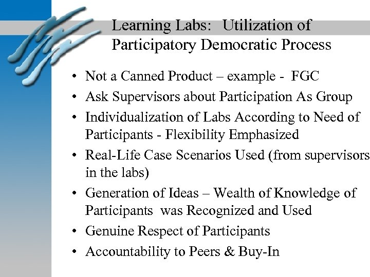 Learning Labs: Utilization of Participatory Democratic Process • Not a Canned Product – example