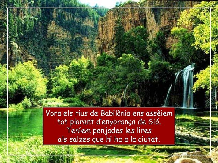 Vora els rius de Babilònia ens assèiem tot plorant d'enyorança de Sió. Teníem penjades