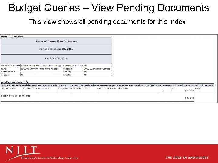 Budget Queries – View Pending Documents This view shows all pending documents for this