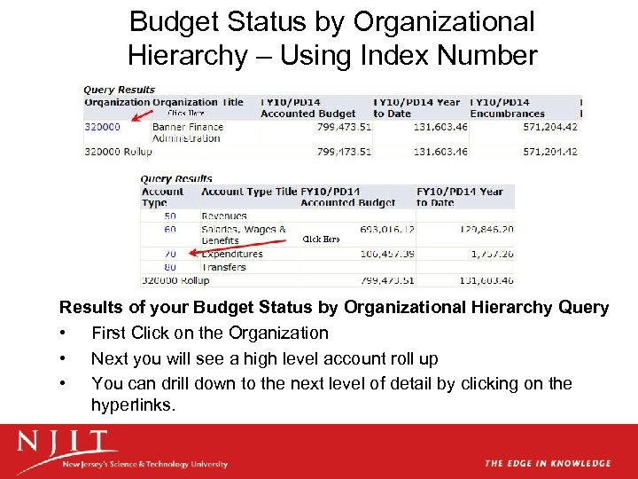 Budget Status by Organizational Hierarchy – Using Index Number Results of your Budget Status