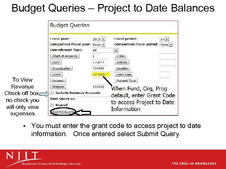 Budget Queries – Project to Date Balances To View Revenue Check off box, no