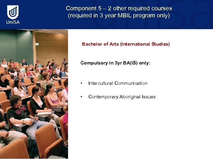 Component 5 – 2 other required courses (required in 3 year MBIL program only)