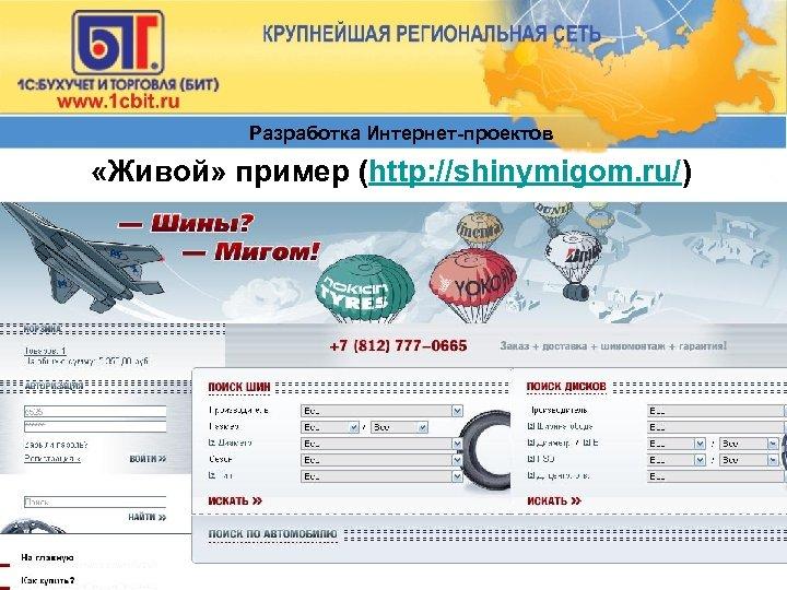 Разработка Интернет-проектов «Живой» пример (http: //shinymigom. ru/)