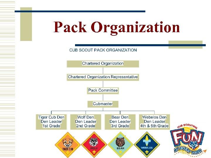 Pack Organization