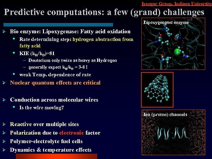 Iyengar Group, Indiana University Predictive computations: a few (grand) challenges Lipoxygenase: enzyme Ø Bio