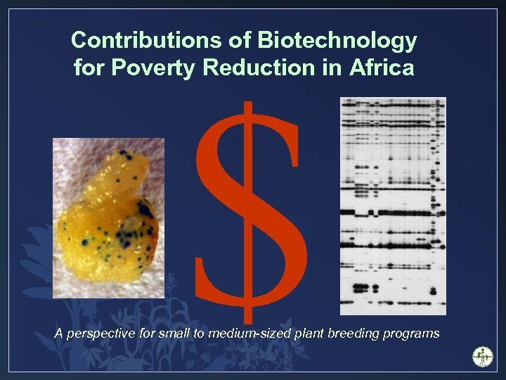 Contributions of Biotechnology for Poverty Reduction in Africa $ A perspective for small to
