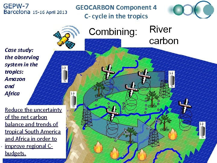 GEOCARBON Component 4 C- cycle in the tropics Case study: the observing system in