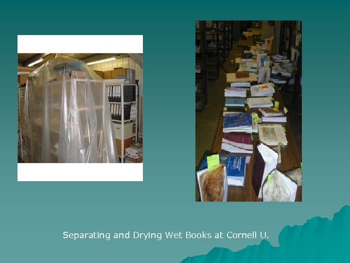 Separating and Drying Wet Books at Cornell U.