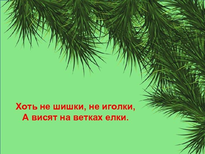 Хоть не шишки, не иголки, А висят на ветках елки.