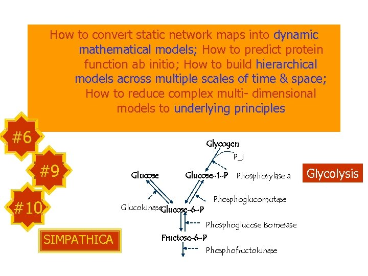 How to convert static network maps into dynamic mathematical models; How to predict protein