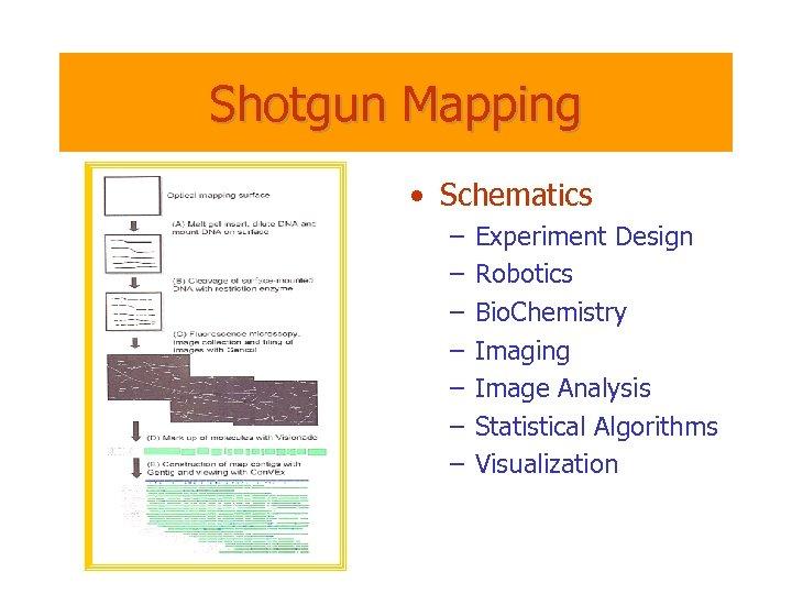 Shotgun Mapping • Schematics – – – – Experiment Design Robotics Bio. Chemistry Imaging