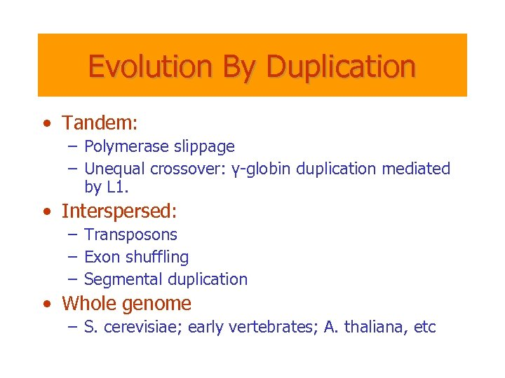 Evolution By Duplication • Tandem: – Polymerase slippage – Unequal crossover: γ-globin duplication mediated