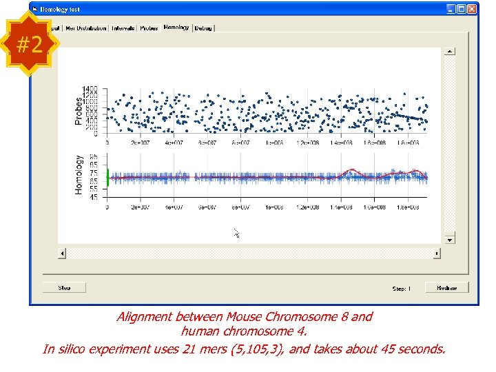 #2 Alignment between Mouse Chromosome 8 and human chromosome 4. In silico experiment uses
