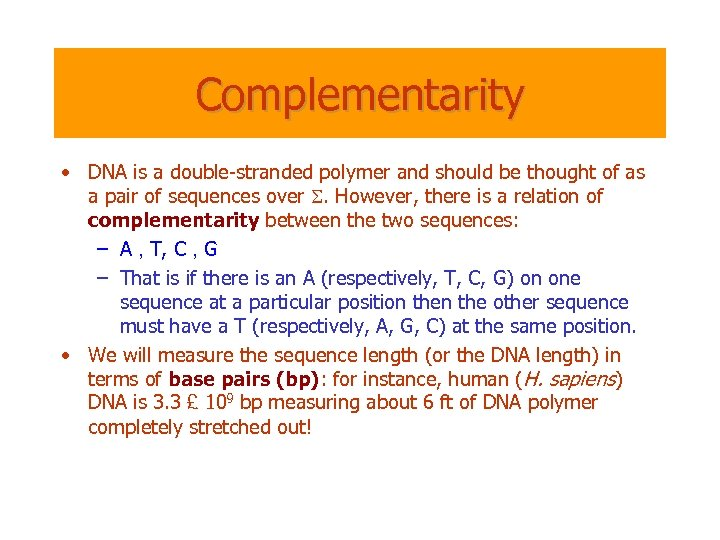 Complementarity • DNA is a double-stranded polymer and should be thought of as a