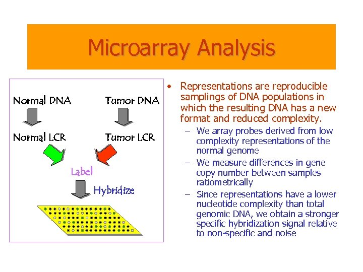Microarray Analysis Normal DNA • Representations are reproducible samplings of DNA populations in Tumor