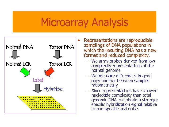 Microarray Analysis Normal DNA • Representations are reproducible samplings of DNA populations in Tumor
